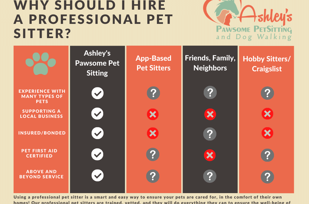 Why Should I Hire a Professional Pet Sitter?
