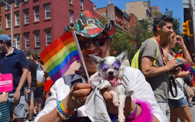 How to Celebrate Pride Month With Your Pets