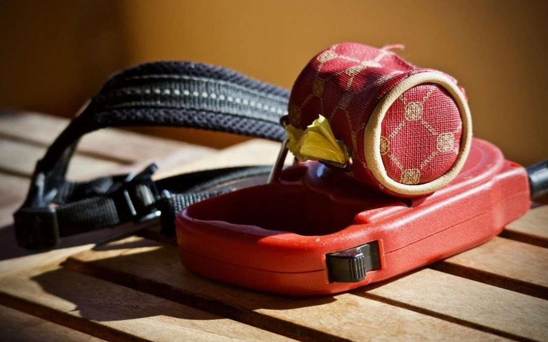 5 Reasons to Say No to Retractable Leashes!